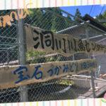 奈良県天川村の、洞川川魚センターで鮎掴み体験!